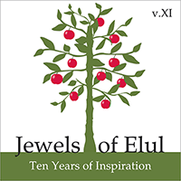 jewels-xi-email